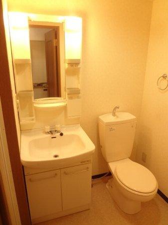 サンイング西船 107号室の洗面所