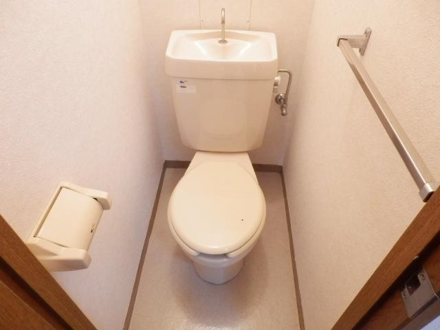 シティハイムファースト 206号室のトイレ