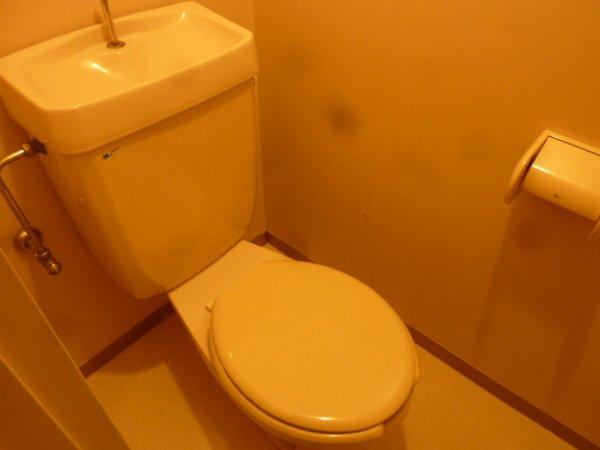 シャトーフローラルN-1 205号室のトイレ