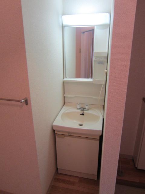 メゾンプレミールA 202号室の洗面所