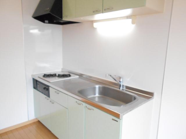 ドリーム・オーノ 101号室のキッチン