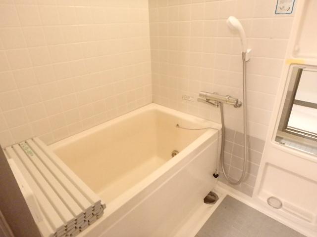T's garden 西船橋 203号室の風呂