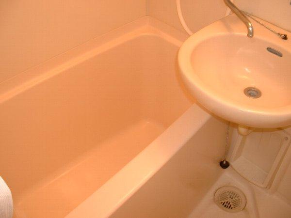 ロワール実籾 206号室の風呂