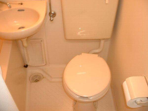 ロワール実籾 206号室のトイレ