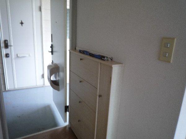 ロワール実籾 206号室の玄関