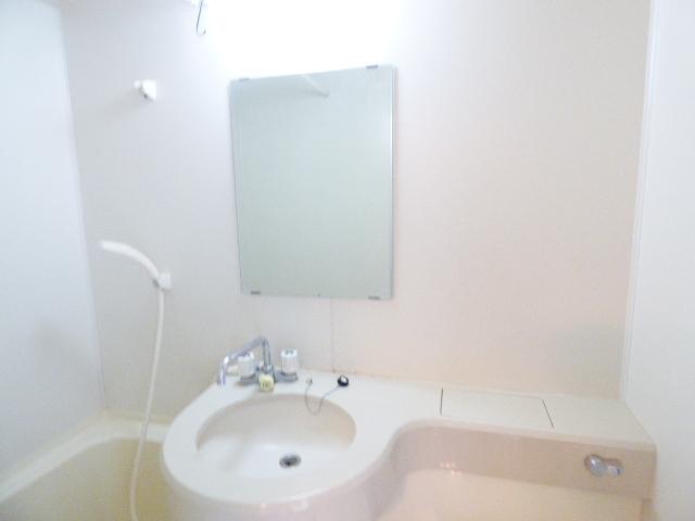 シティクレスト津田沼 209号室の洗面所