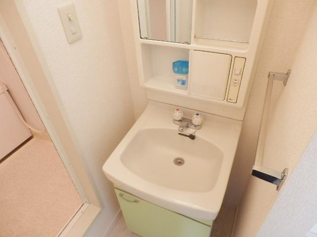 ヴィラセイワB 201号室の洗面所