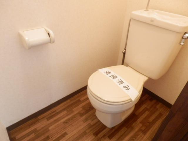 ヒルズミヤマ 202号室のトイレ