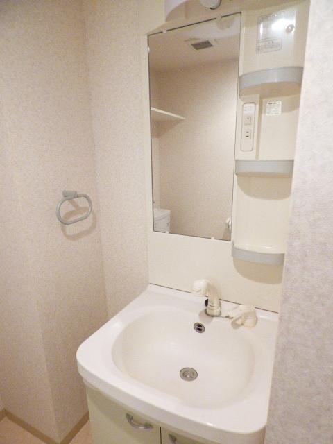 スマートガーデン津田沼 302号室の洗面所