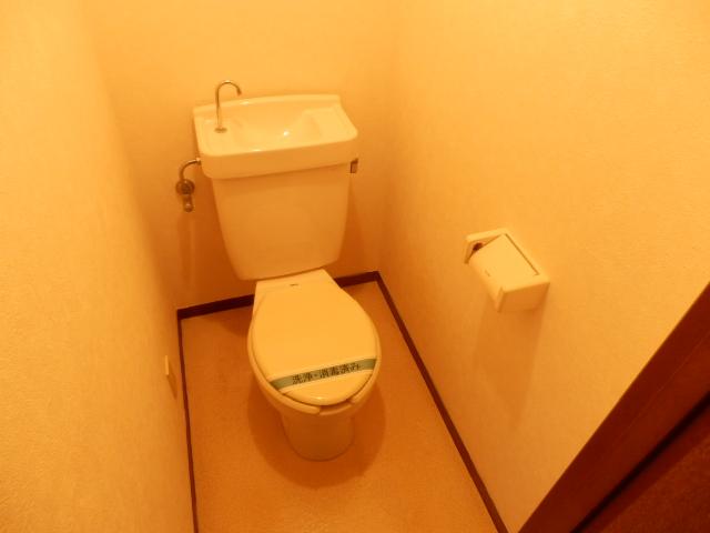 ヴィラ・パンテオン 302号室のトイレ