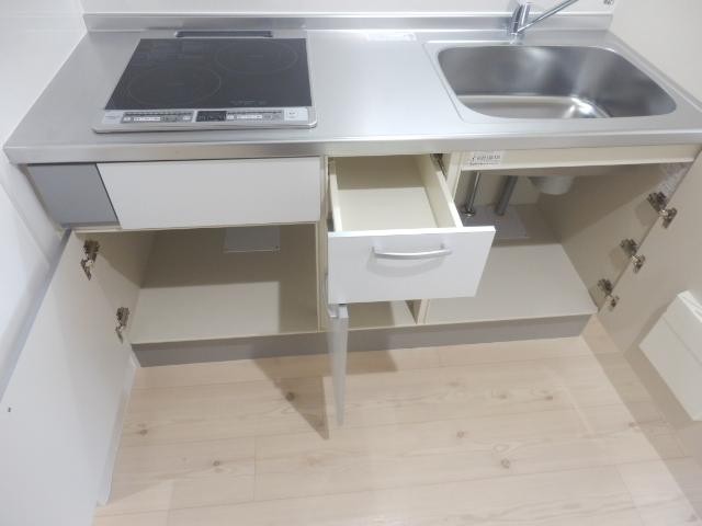 ブリリアント大木 305号室のキッチン