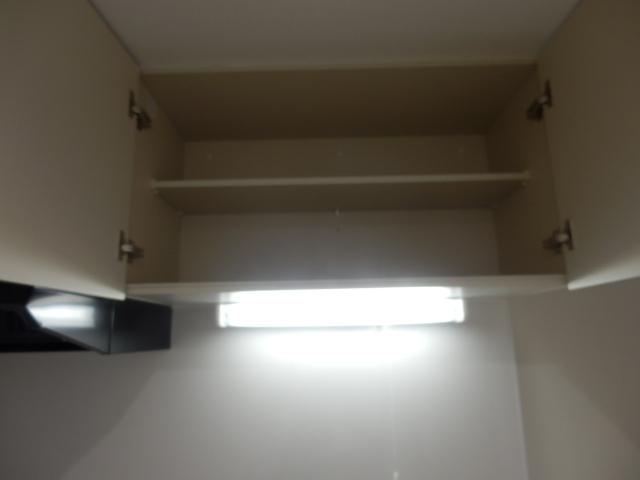 ブリリアント大木 305号室の収納