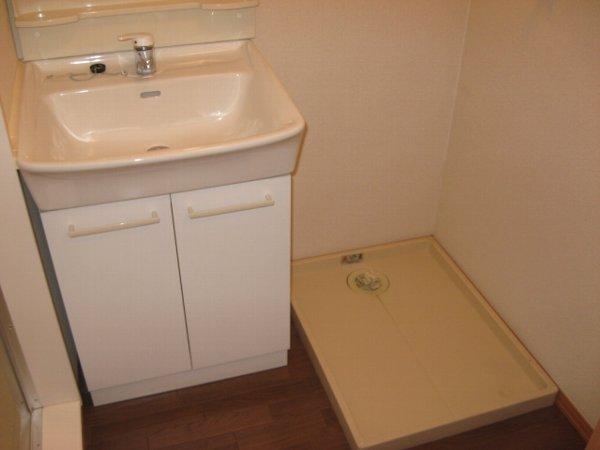 グリーンヴェール 203号室の洗面所