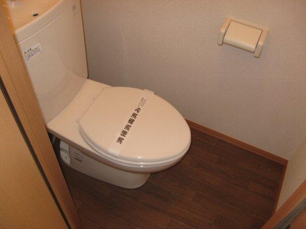 グリーンヴェール 203号室のトイレ