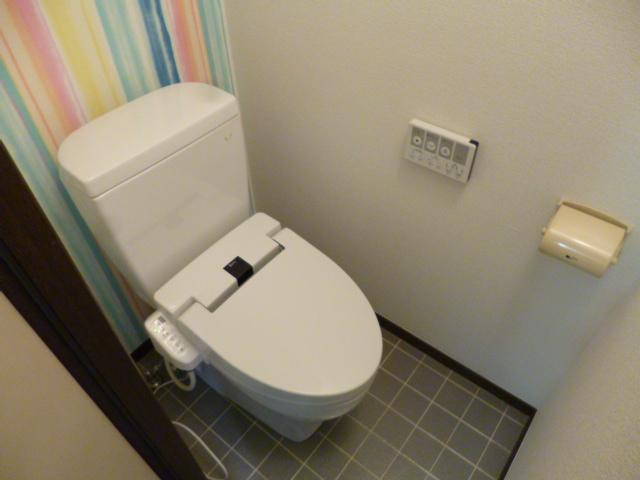 メゾン・ド・ジュネス 202号室のトイレ