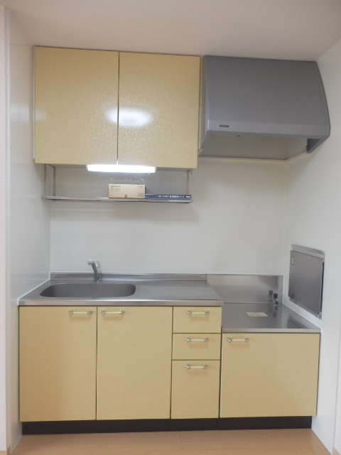 アフロディテ 105号室のキッチン