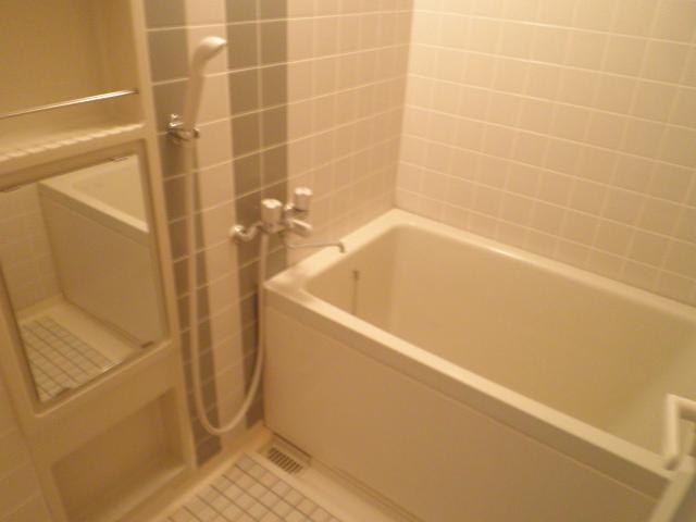 サントルヴィラージュ 401号室の風呂
