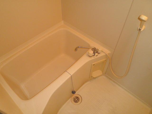 ヴィラアルテミス 306号室の風呂