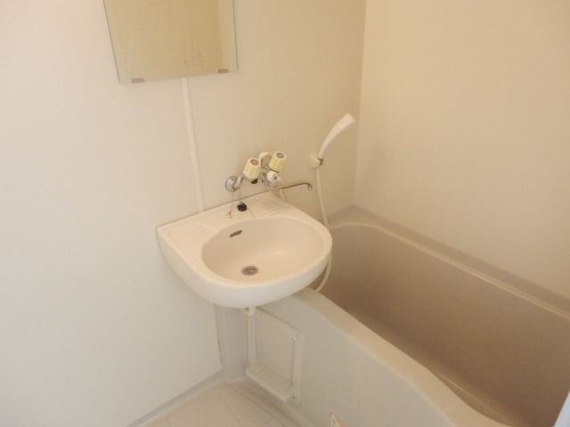 Fountain Hill 206号室の洗面所