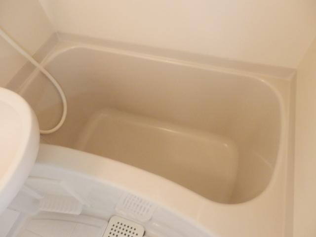 Fountain Hill 206号室の風呂