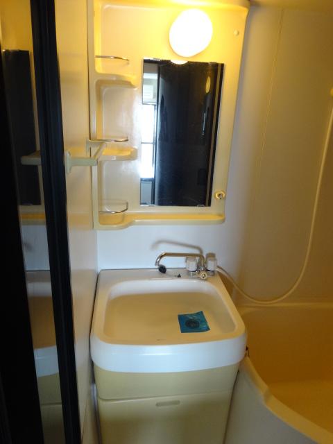 ラ・パルフェ・ド・プレオ 503号室の洗面所