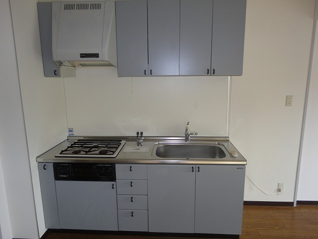 ヴェルデ洛西 301号室のキッチン