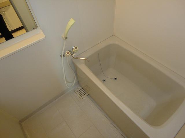ヴェルデ洛西 301号室の風呂