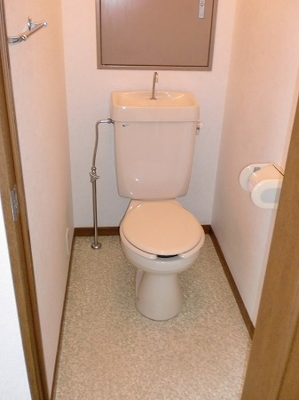 ゴールドマンション浦和 303号室のトイレ