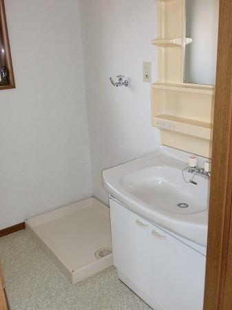 ゴールドマンション浦和 303号室の洗面所