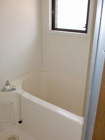 ゴールドマンション浦和 303号室の風呂