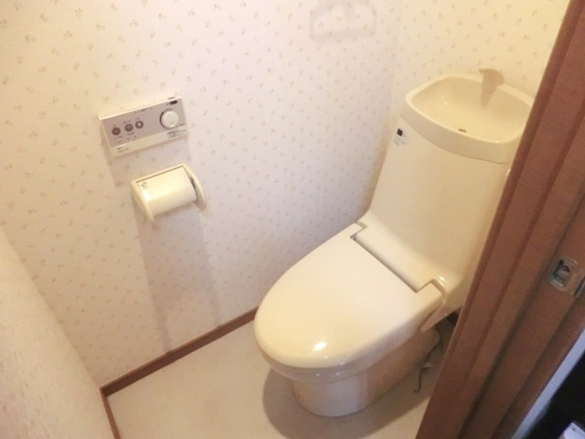 ウェルコート 206号室のトイレ