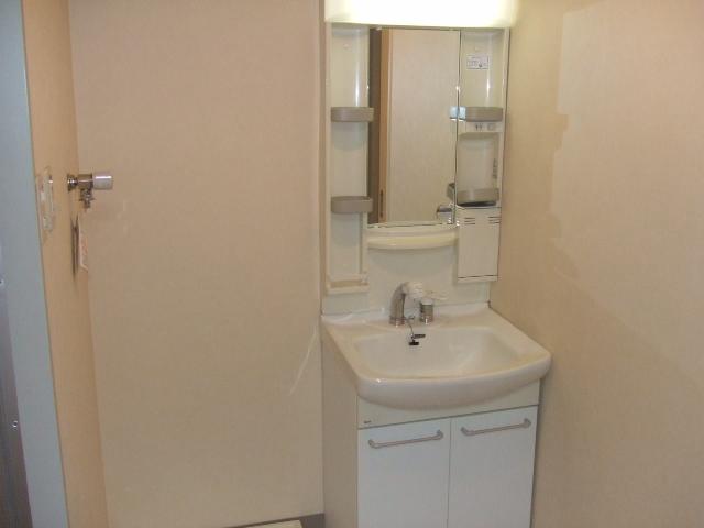 第10秋葉ビル 208号室の洗面所