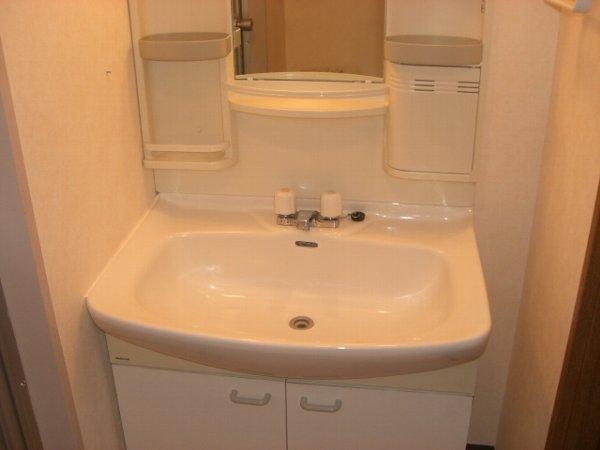 クィーンズ・ヴィラ武蔵浦和 205号室の洗面所