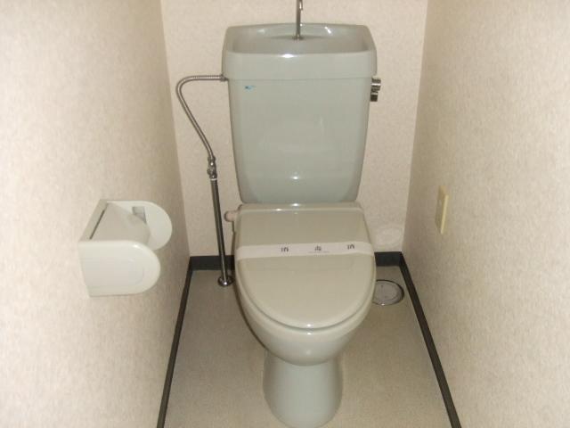ボナールハナブサ 306号室のトイレ