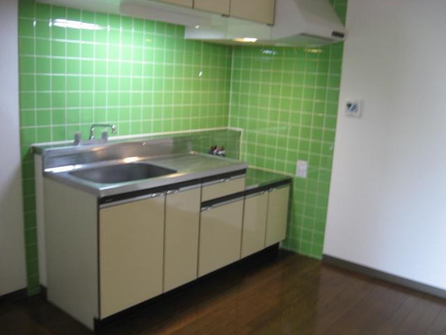 グリーンパークタニグチ 504号室のキッチン
