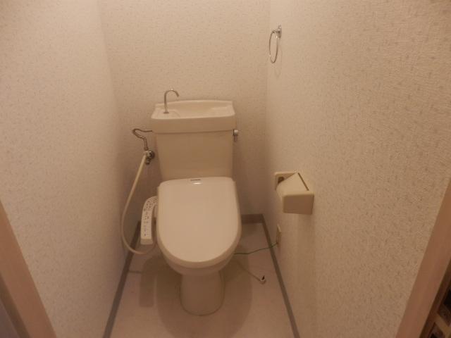小野沢ハイム 302号室のトイレ