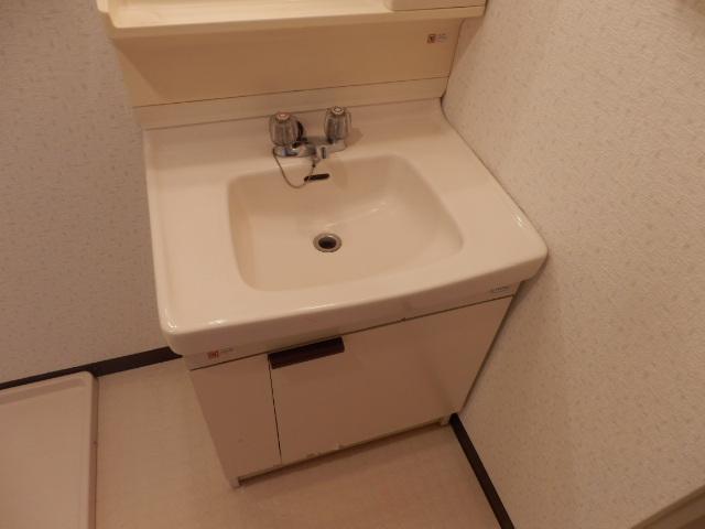 ハイデンス上の宮 102号室の洗面所
