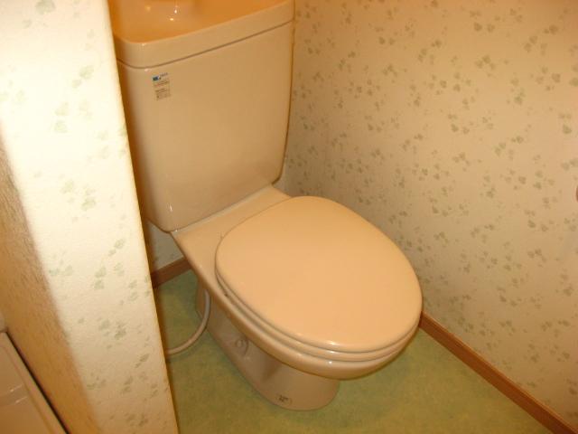 グリーンハイム壱番館 203号室のトイレ