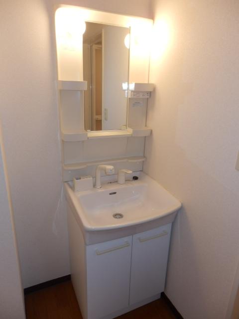 グランドール武蔵浦和 302号室の洗面所