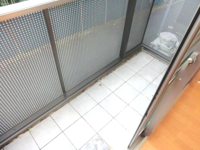 サンモールT 202号室のバルコニー