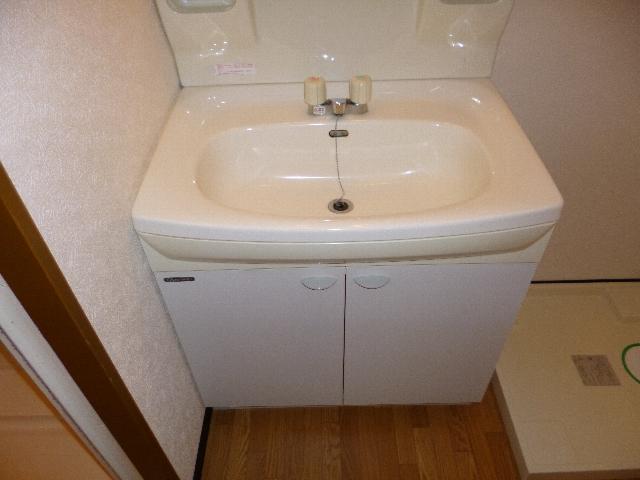 アイセイ エフ 104号室の洗面所