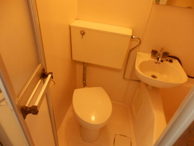 ハイランドコーポ辻 306号室のトイレ