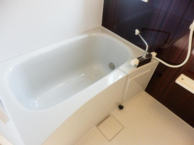 アムール武蔵浦和 103号室の風呂