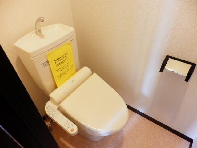 アムール武蔵浦和 103号室のトイレ