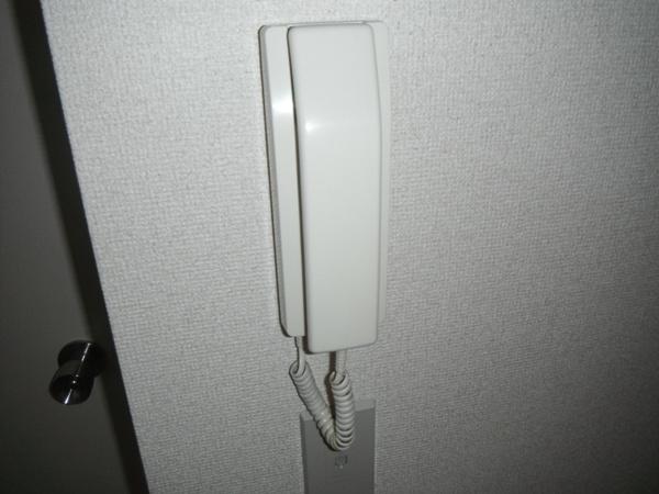 ヴィラ青山Ⅱ 101号室のセキュリティ