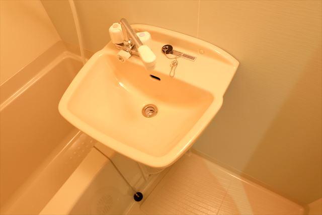 ルミナス浦和 203号室の洗面所