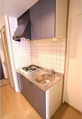 アクタス博多駅前 805号室のキッチン