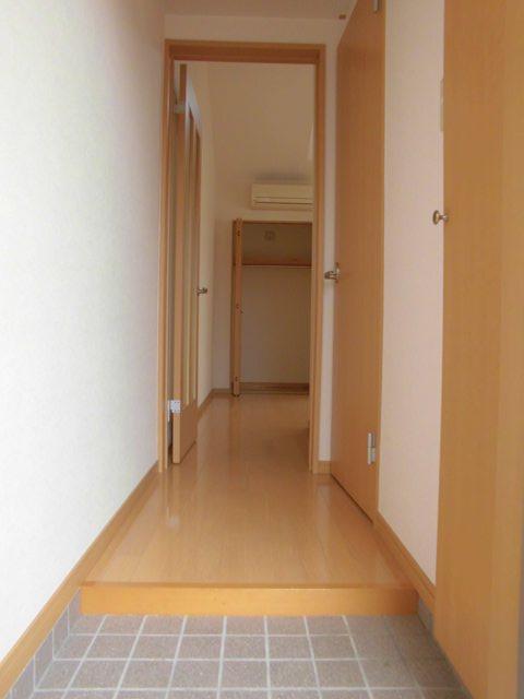 YS吉塚駅東1 202号室の玄関