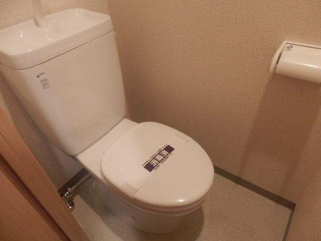 ジュエル上野毛 304号室のトイレ