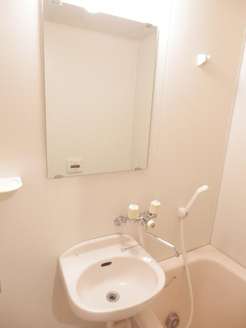 ラピュタ自由が丘 305号室の洗面所